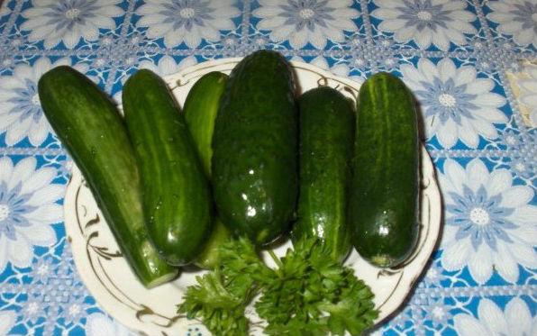 Малосольные огурцы: рецепты быстрого приготовления, что бы огурцы были вкусные и хрустящие