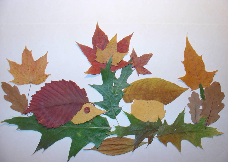 applic-na-temu-osen_12 Поделки своими рукам на тему осень в садик из природного материала