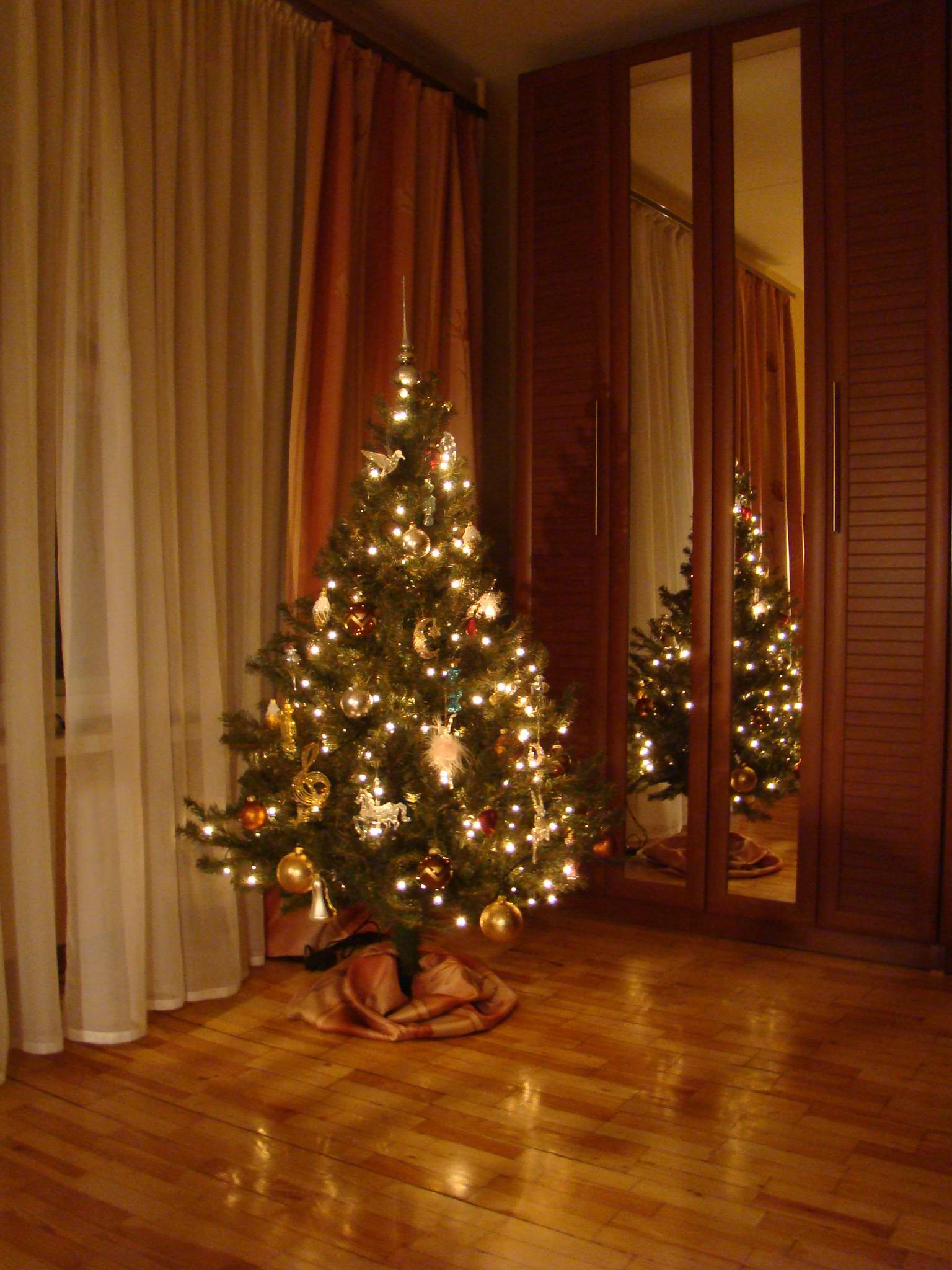 смотреть фото елка дома может быть